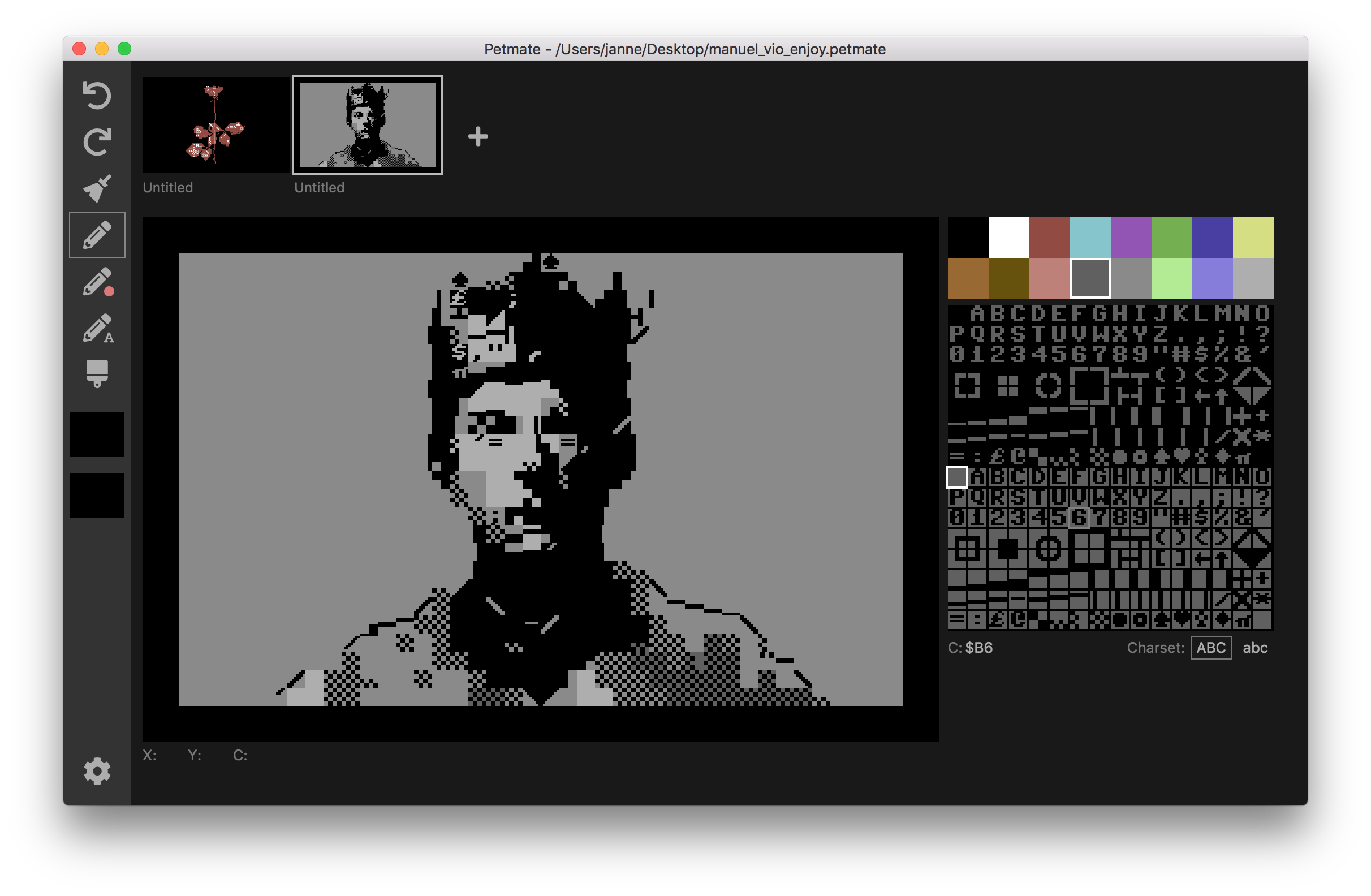 Petmate screenshot w/ PETSCII by Manuel Vio